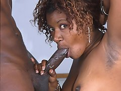 Gallery of Ebony Blowjob XXX
